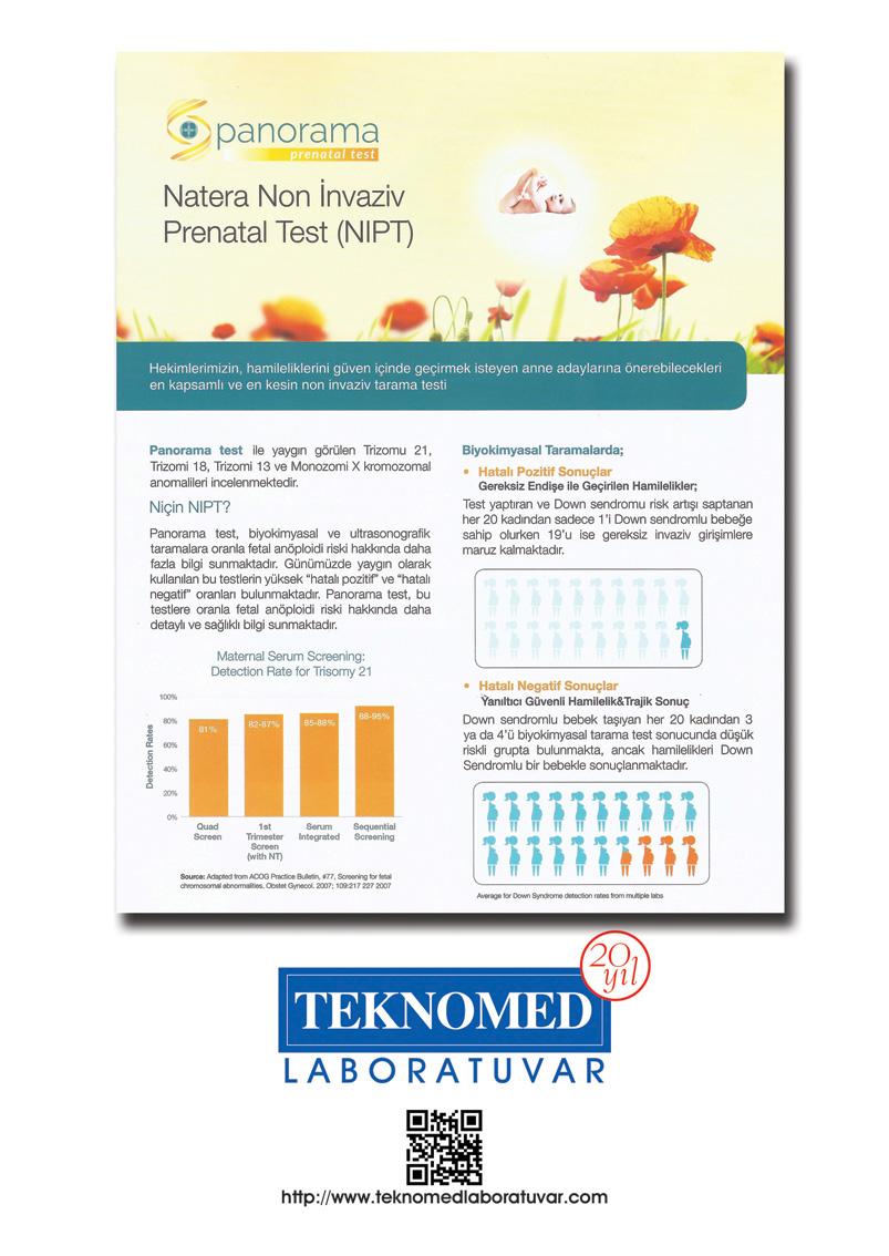 Тест панорама для беременных цена 53